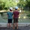 Retour en Charente Maritime paysages mer enfants charente art animaux